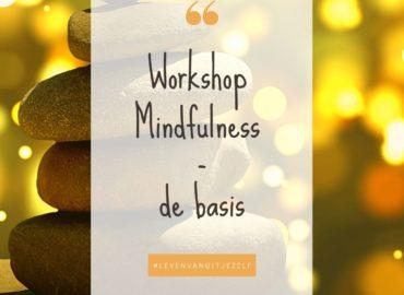 Workshop Mindfulness-de basis